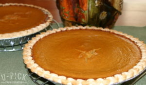 Pumpkin Pie Recipe | upickfarmlocator.com