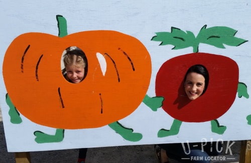Kid fun at Choice Orchards Sturgeon Bay Wisconsin | upickfarmlocator.com